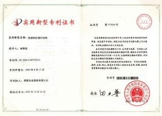 China Patent: No# 2004 2 0077272.3