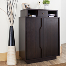Long High-Quality Multi-Functional Shoe Cabinet