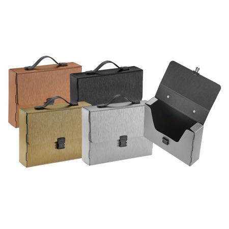 Metallic Look Carry Document Case - Silkrado Carry Data Case
