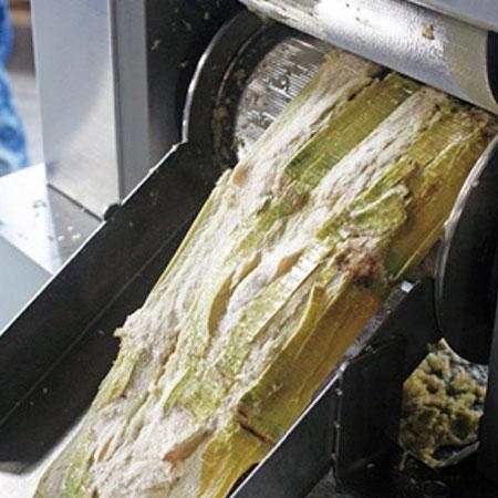 6つのステンレス鋼ローラー。ジュースの収量を向上させるために3回絞る。