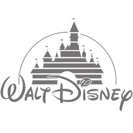 Disney's Factory Audit