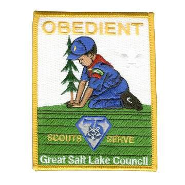 Cub Scout Patches - Cub Scout Patches