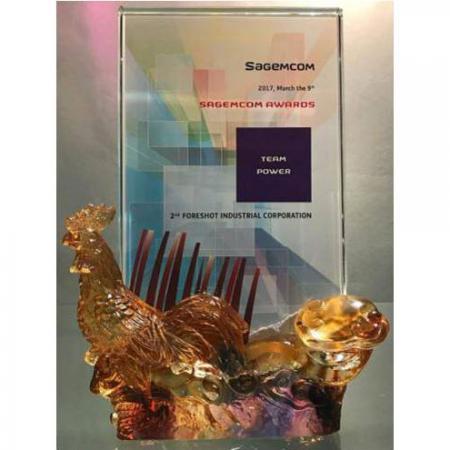 宏塑荣获Sagemcom颁发Team Power绩优供应商奖项。