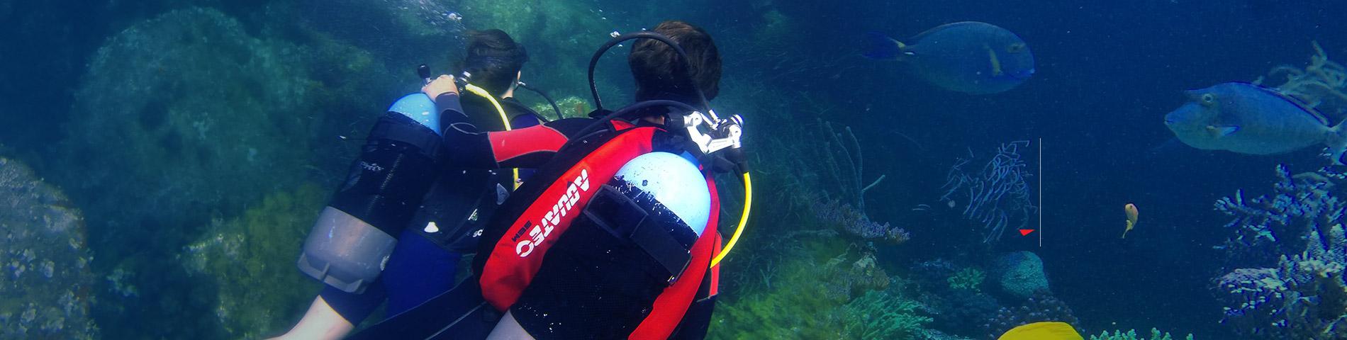 AQUATEC 给您一个独特难忘的海底世界