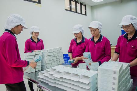 Process procedure of bio-cellulose sheet mask production - 裝盒