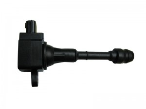 فحم الاشتعال - IGNITION COIL - DSA019