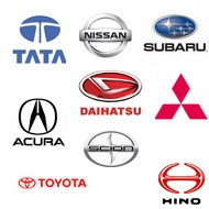 Starter für asiatische Models - Asiatische Modelle Starter