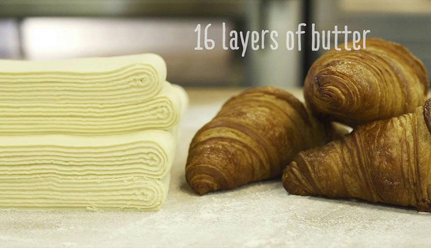Dough Sheeter Sheeting