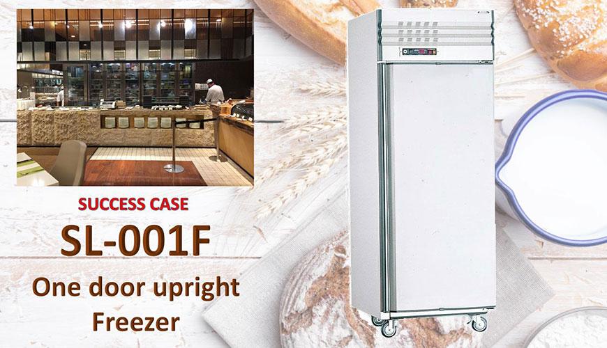 Congelatore verticale a una porta