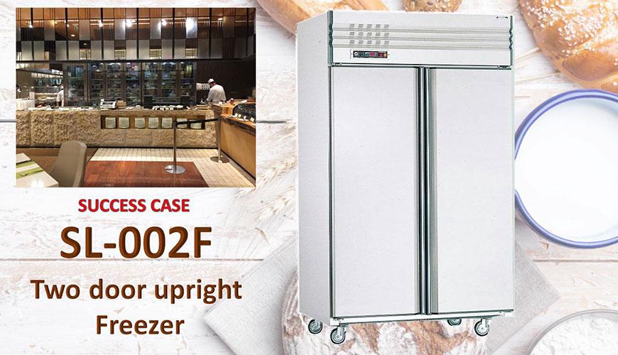 Congelatore verticale a due porte