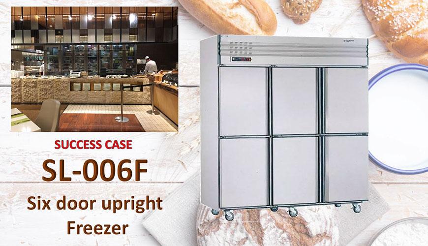 Six Door Upright Freezer