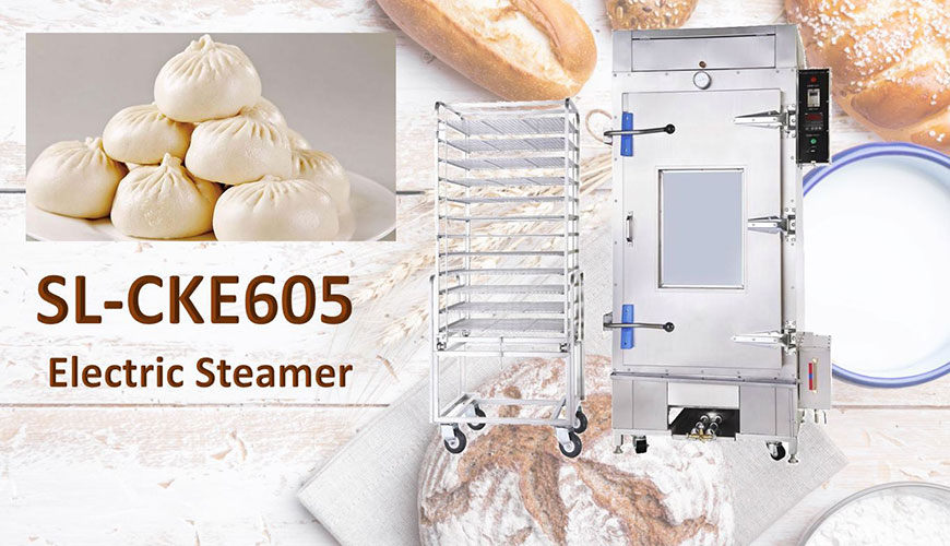 Electric Type Steamer