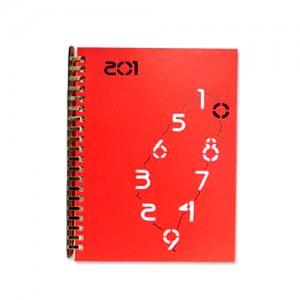 Maßgeschneidertes Tagebuch mit Ledereinband