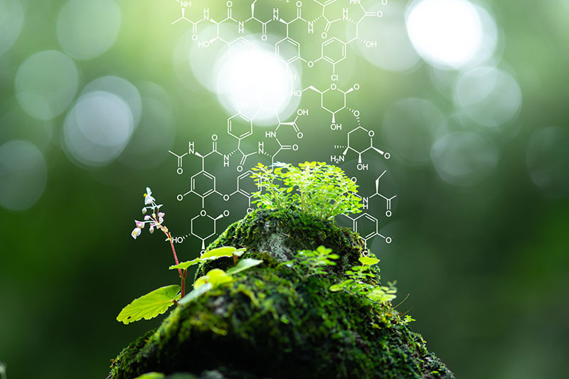 Green Chemistry for Quality Life.