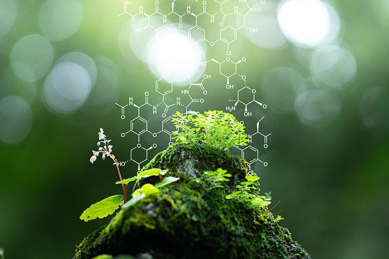 生質原料以生物質資源來取代部分石化產品,來源皆以非糧食作物為主,不與民爭糧,具有資源永續性。