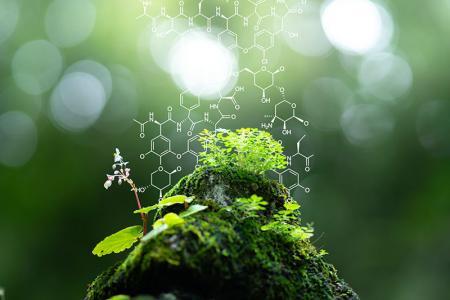 Biomasseprodukte - Grüne Chemie für Lebensqualität.