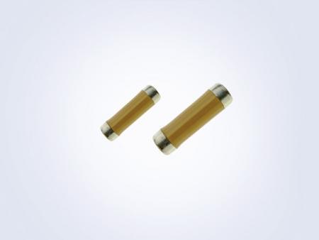 スラッグ抵抗センターコーティング-SLC - Slug Resistor Center Coated