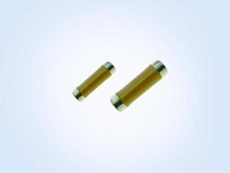 Slug Resistor Center Coated 0.16W 1ohm 5%