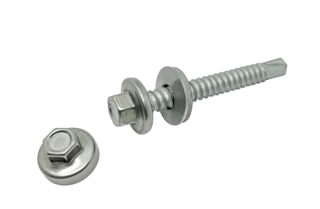 Stainless Steel Capped screw - Stainless Steel Capped Screw