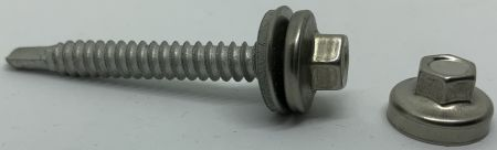 SS CAPPED SCREW SDS - SS Capped screw