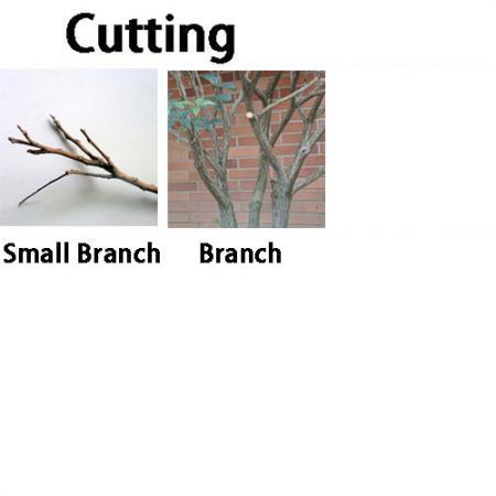 Soteck håndværktøjsfolde til beskæring
