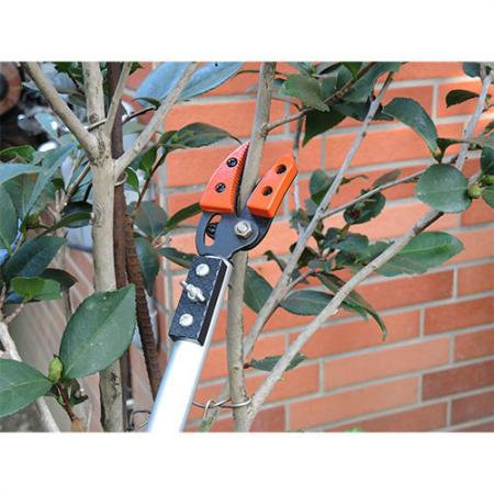 Soteck 40inch (1000mm) fixed length long reach tree pruner