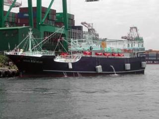 290 톤 오징어 어선