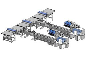 Wrapping Line With Smart Distribution Station