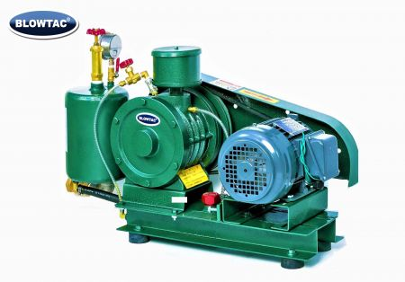 Rotary Vane Type Gas Blower