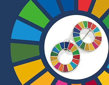 SDG 옷깃 핀