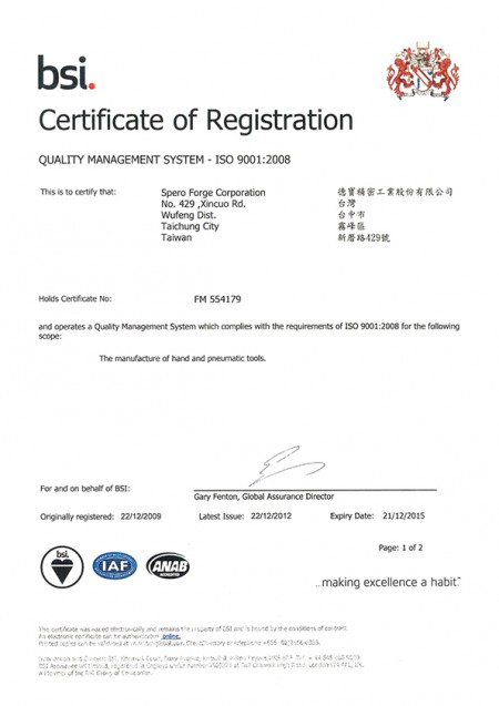 ISO 9001: 2008 (1)