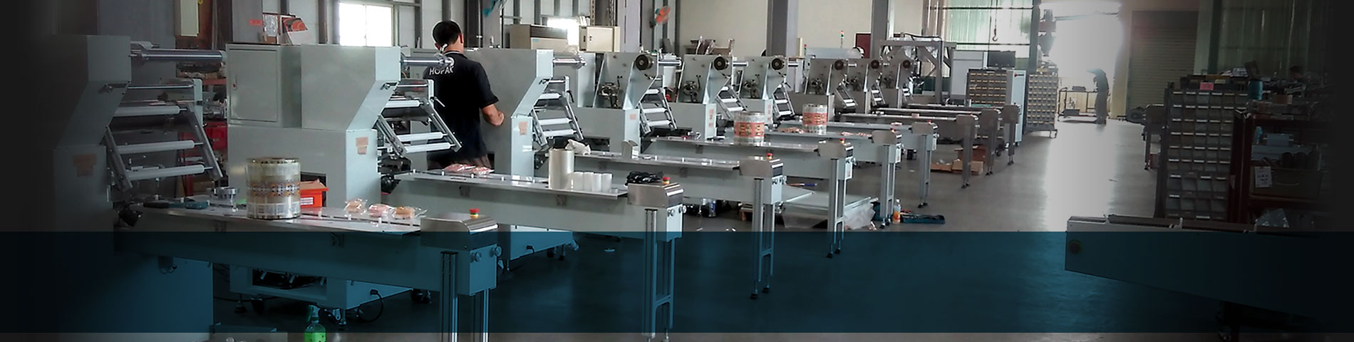Professional Flow Wrapper Manufacturer