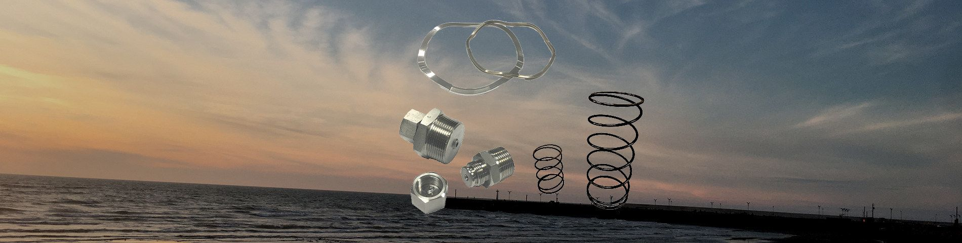 ODM & OEM Wave Springs and Grease Fittings