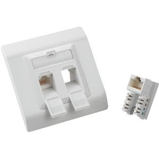 2-Port Cat 6 Faceplate