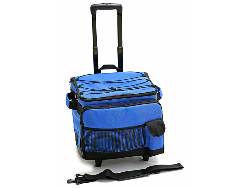Collapsible Cooler Bag on Wheels - Foldable cooler bag with 2 wheels.