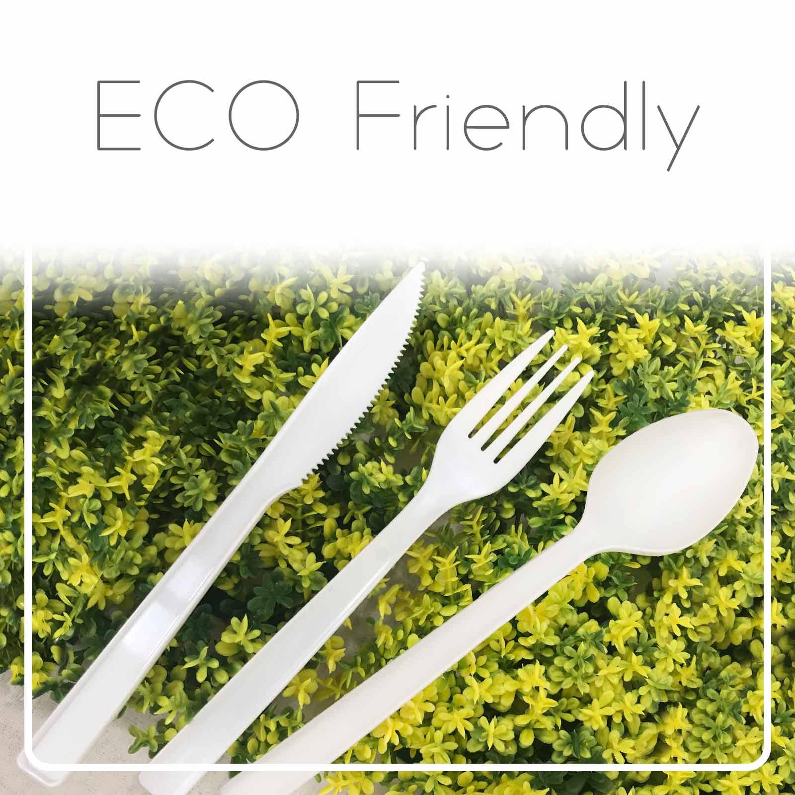 Eco Friendly Tableware - Peralatan sekali pakai yang mesra alam