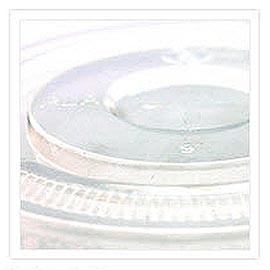 PLA Lid - Biodegradable and Hot Beverage Friendly Coffee Lid