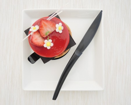 Plastic Cake Knife For Tart