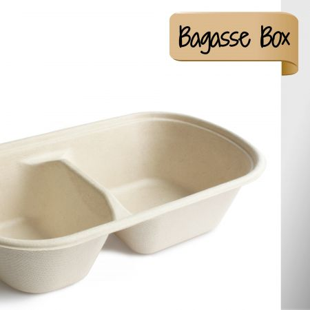 ECO-Friendly Container - ECO friendly Sugarcane Container