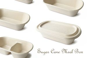 Eco Friendly Sugar Cane Meal Box
