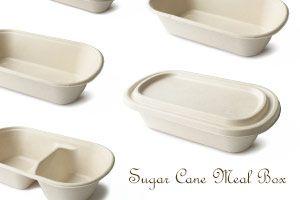 Caja de comida ecológica de caña de azúcar