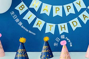 Birthday Party Banner and Party Hat