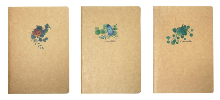Cahier Nature Insectes