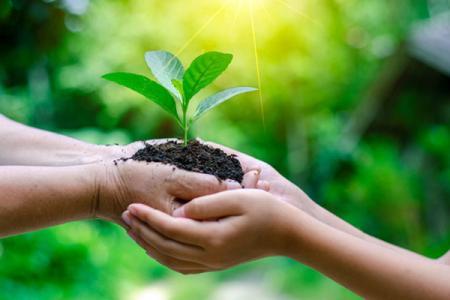 Matériel de tricot de durabilité - Protection de la vie et de l'environnement