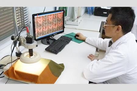 Analyse de tissu