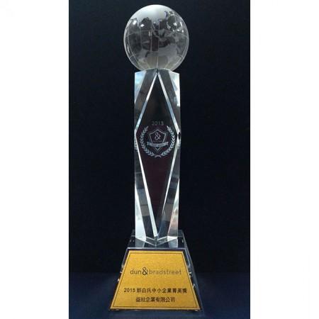 2015 Tayvan D&B KOBİ ödülü