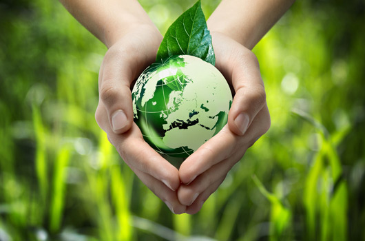 Umweltfreundlich und nachhaltig.