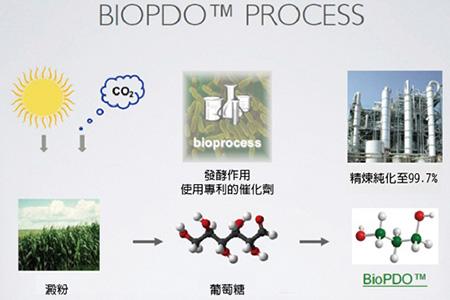 生质型防水薄膜的生成过程。