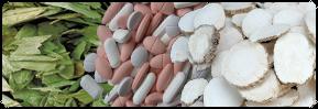 Biotek/Farmasi, Ramuan Cina & Makanan Sehat