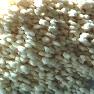 Nitrato de amonio